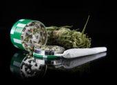 Dried cannabis plant, marijuana — Stock Photo