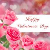 Růžové růže pozadí — Stock fotografie