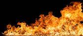 Beautiful stylish fire flames — Stock Photo