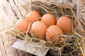 Jaja na drewniane tła — Zdjęcie stockowe