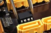 Tweezers insert microchip — Stock Photo
