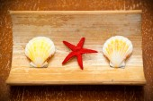 Starfish and shells in red on a wooden surface — Stock Photo