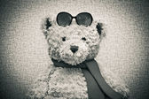 Toy teddy bear wearing a scarf and sunglasses — Stock Photo