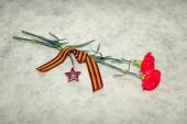 Two colors cloves, George Ribbon and the Order of the Red Star. Victory Day in the Great Patriotic War — Stock Photo