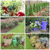 Collage of garden images — Stock Photo