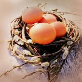 Vintage photo of easter eggs in the nest — Stock Photo