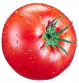 Tomato with water drops. — Stock Photo