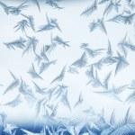 Frosty pattern. — Stock Photo #58523571