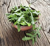 Arugula  herb. — Stock Photo
