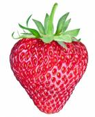 One rich strawberry fruit. Clipping paths. — Stock Photo