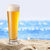 Photo of cold beer botle in the sand.  — Foto de Stock