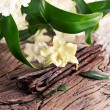 Bunch of vanilla sticks and flower on old wood. — Stock Photo #63923875