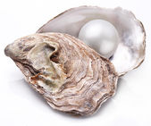 Oyster with pearl isolated. — Stock Photo