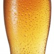 Glass of beer on white background. — Stock Photo #65777643