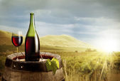 Still-life with glass of wine and bottle on the barrel in the vi — Stock Photo
