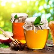 Glass cans full of honey, apples and combs. — Stock Photo #69062227