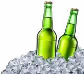 Beer bottles on white background. — Stock Photo
