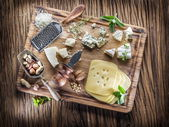Different types of cheeses with nuts and herbs. — Stock Photo