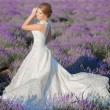 Beautiful Bride in wedding day in lavender field — Stock Photo #75621991
