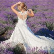 Beautiful Bride in wedding day in lavender field — Stock Photo #75622077