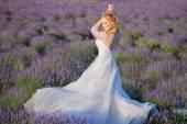 Beautiful Bride in wedding day in lavender field — Stock Photo