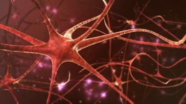 Neurons structure sending electric impulses — Stock Video