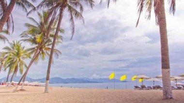 Tropical Beach. — Stock Video