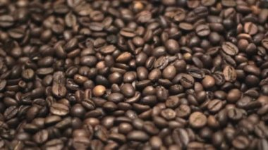 Coffee Beans. — Stock Video