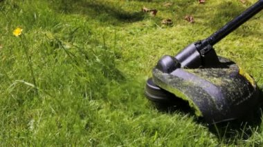 Cutting grass with lawn mower. — Stok video