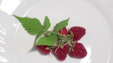 Ripe red raspberries — Stock Video