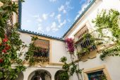 Typical patio in Cordoba, Andalusia, Spain. — Stock Photo