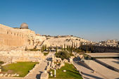 Mt of Olives from Temple mount — Stock Photo