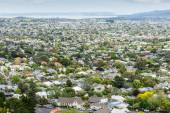 Aerial view of Auckland suburb, New Zealand — Stock Photo