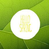 Hello Spring Text — Vector de stock