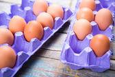 Huevos de contenedor — Foto de Stock