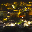 Panoramic view from old town  — Stock Photo #69375081