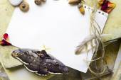 Composition with old papers,feather, fly by night, and acorns  — Stock Photo