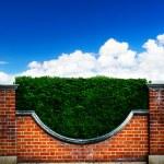 Art shrubs and brick fence on blue sky background — Stock Photo #56045623