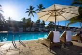 Art Deckchairs in tropical resort hotel pool — Stock Photo