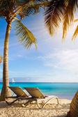 Art Deckchairs in tropical beach — Stock Photo