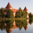 Trakai castle — Stock Photo #55727081