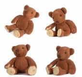Teddy bears — Foto de Stock