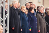 Independence Day in Vilnius — Stock Photo