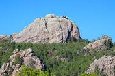 Black Hills Landscape South Dakota — Stock Photo