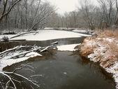 Kishwaukee River Winter Landscape Illinois — Photo