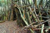 Primitive Log Shelter Illinois — Stock Photo