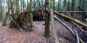 Primitive Log Shelter Illinois — Stockfoto