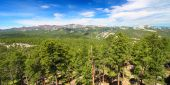 Black Hills National Forest Panoramic — Stock Photo