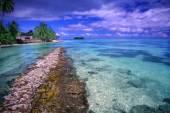 Moorea Beach Lagoon French Polynesia — Stock Photo