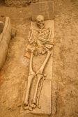 Human remains at Viminacium site — Stock Photo